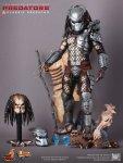 Predators - 1-6th scale Classic Predator Collectible Figure 18