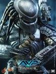 Alien vs. Predator - 1-6th scale Scar Predator Collectible Figure - 07