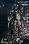 MMS221 - Alien vs Predator - Celtic Predator 01