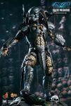 MMS221 - Alien vs Predator - Celtic Predator 02