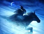 The Curse of Maleficent by Nicholas Kole 11