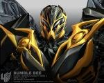 R_Bumblebee_121218_14eHeadConcept_WM800